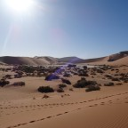 Tag 15+16: Namib Naukluft Nationalpark und Sossusvlei
